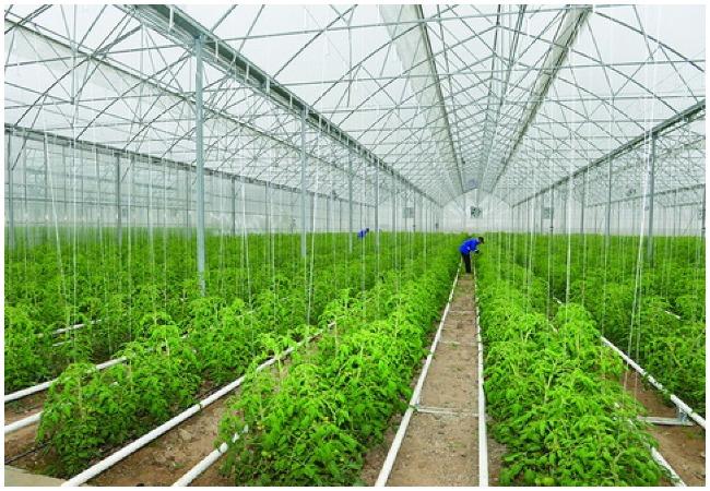 Agricultural land in Azerbaijan